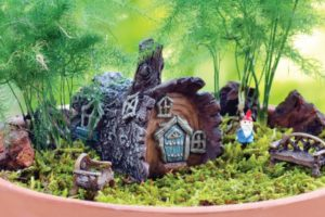 composition d'un jardin miniature