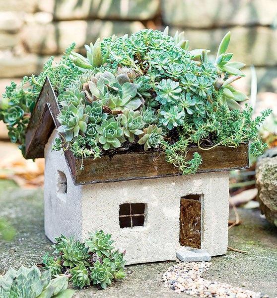 cr er son jardin miniature avec des plantes succulentes. Black Bedroom Furniture Sets. Home Design Ideas